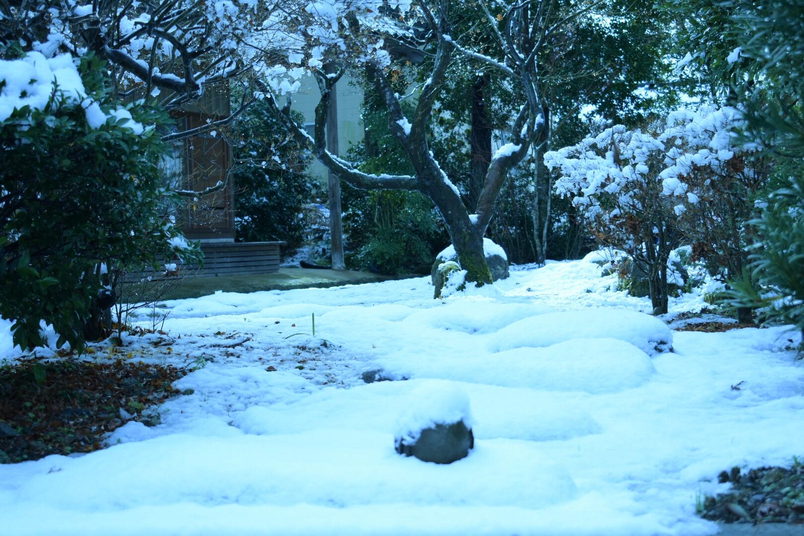 富山 初雪